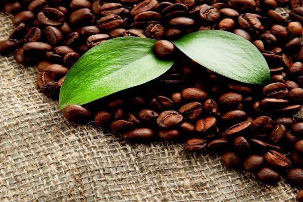 Coffee Massage In Worthing At Laroma Therapies Worthing
